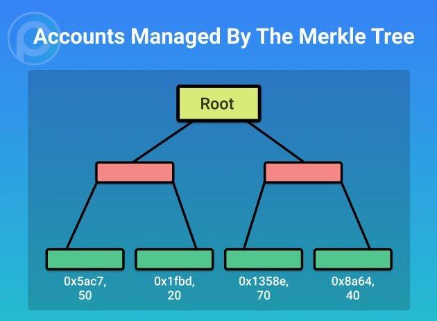 由Merkle树管理的账户
