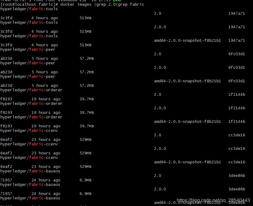 HyperLedger Fabric 2.0 测试网络部署
