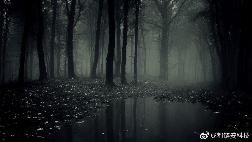 "DeFi""黑暗深林"":有去无回的危机"